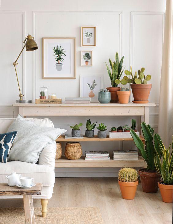 Tienda de muebles y decoración de tendencia