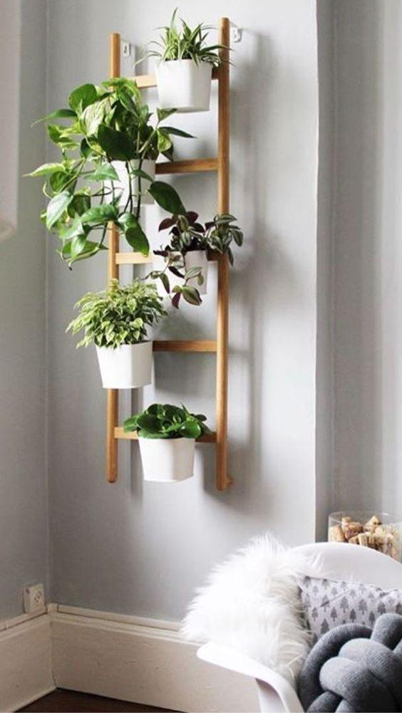 crear jardín vertical
