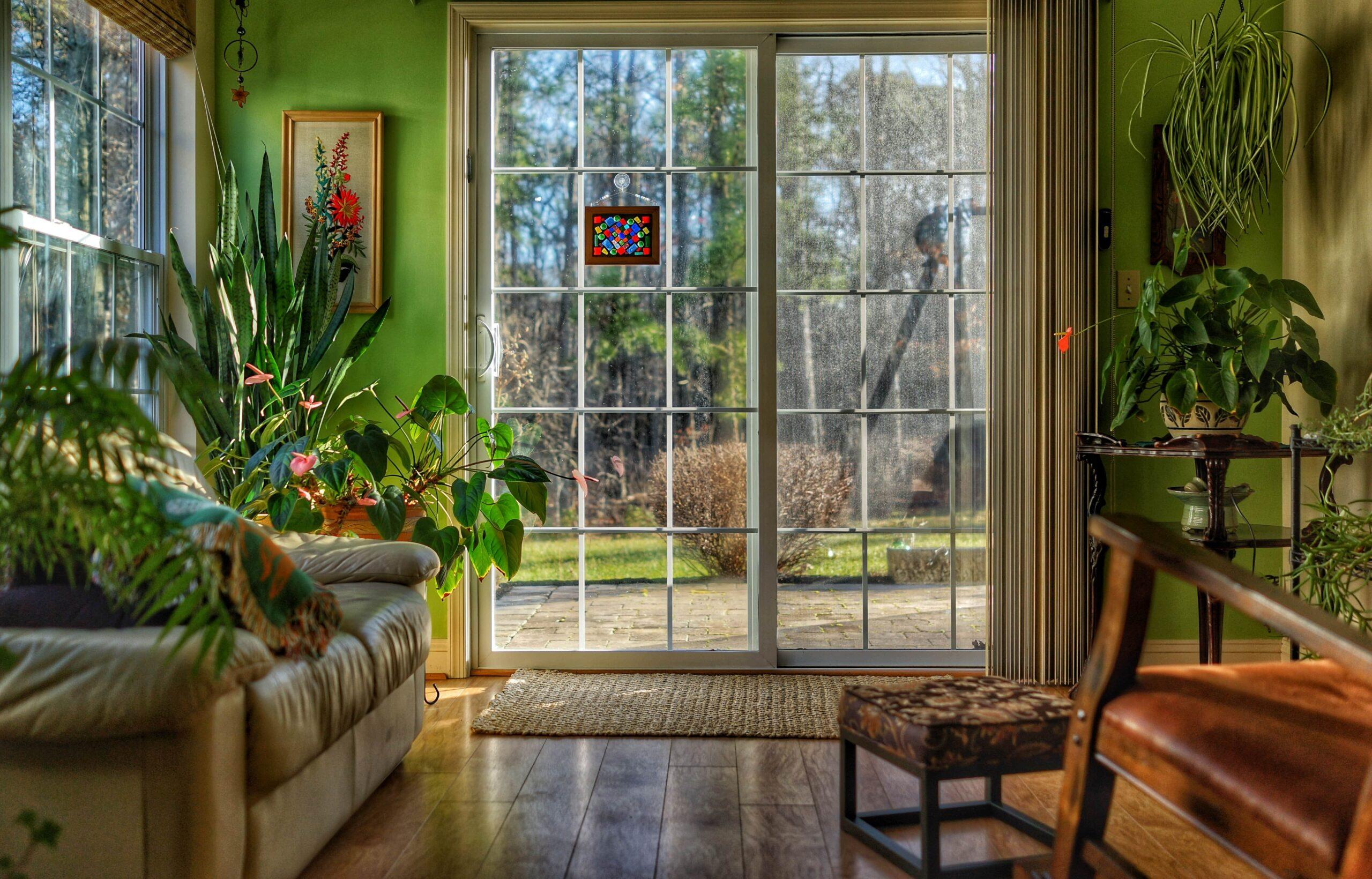 Habitación decorada con plantas